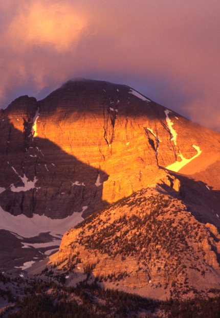 Wheeler Peak glows at sunrise