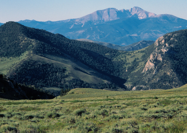 The Snake Range was first protected as a National Forest Reserve in 1891